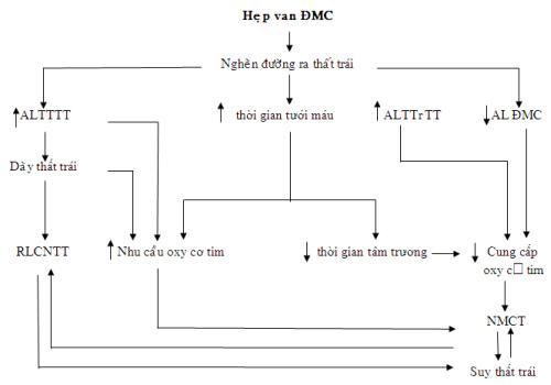 sodo-hepvan-dmc