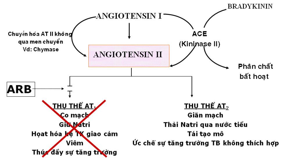 Telmisartan-h1