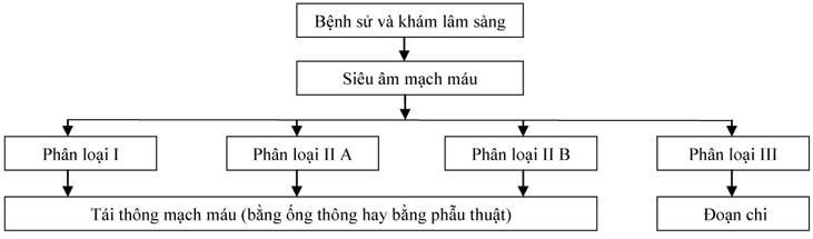 Thieumaucucbochi-H2