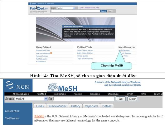 PubMed-h17
