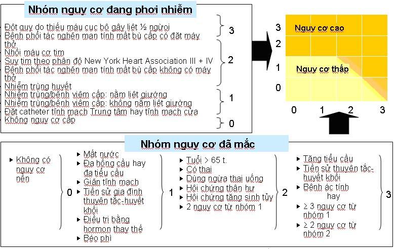 huyet_khoi_tinh_mach-h4