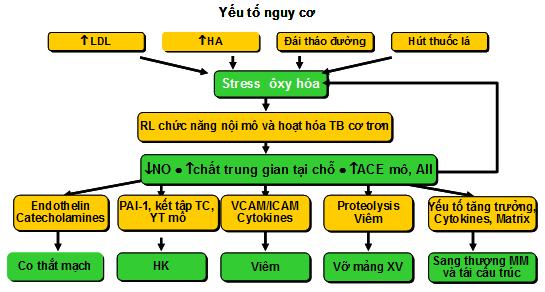 uc-che-menchuyen-8