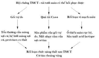 TMCT-1